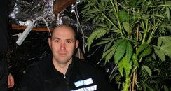 PC Patch Collins with one of the 27 plants found