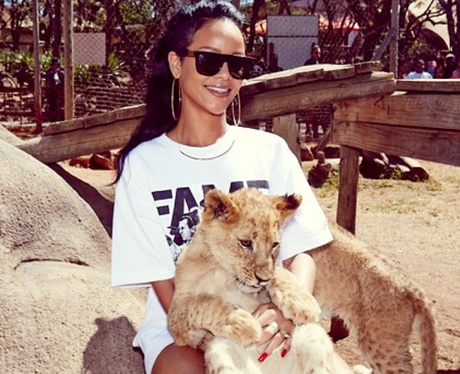 Rihanna on safari