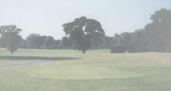 Artington Golf