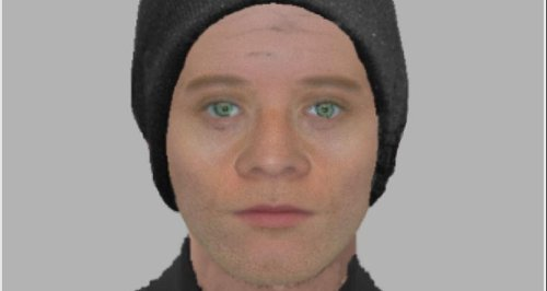 Efit released of a man who tried to rob a woman