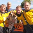 Minehead dog rescue