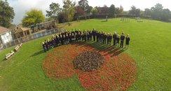 Coxley Primary School Poppy
