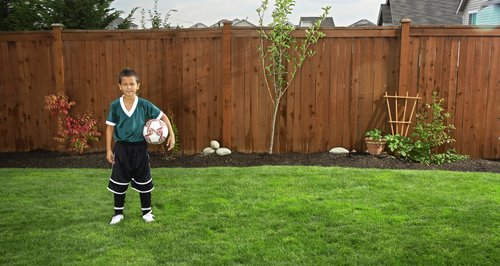 Fence and Football