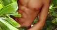 Guess the torso