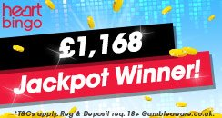 Bingo - £1168 Winner