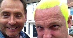 tennis ball hair