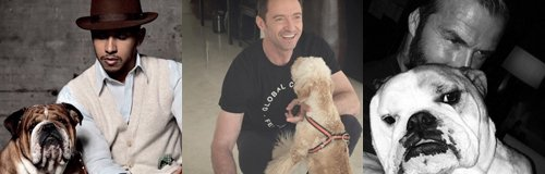 Man's Best Friend: Celebrity Men and Dogs Canvas