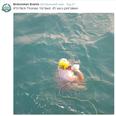 swim dover